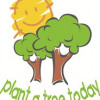 Plant a Tree Today (PATT) Foundation