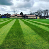 Knowle Cricket Club
