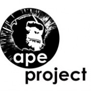APE Project CIC avatar image