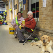 York Blind and Partially Sighted Society avatar image