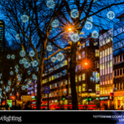 The Festive Lighting Company Limited avatar image