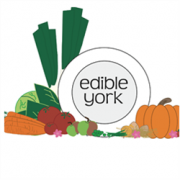 Edible York avatar image