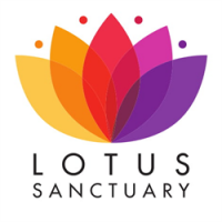 Lotus Sanctuary CIC avatar image
