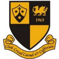 Carmel & District Cricket Club avatar image