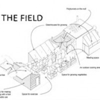 The Field avatar image