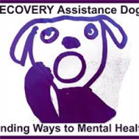 RECOVERY Assistance Dogs avatar image