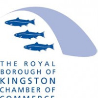 Kingston Chamber of Commerce avatar image