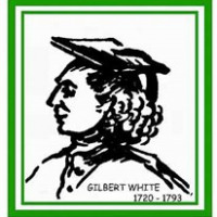 The Selborne Society Ltd.,  avatar image