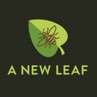 A New Leaf avatar image