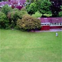 friends of westdene green avatar image