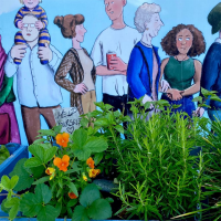 Incredible Edible Cheriton and Broadmead avatar image