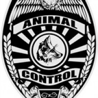 Animal Control avatar image