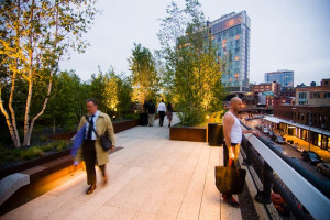 highline-park-photo-1.jpg - TYS Oak Way Renovation