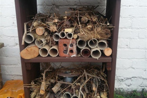 bug-house.jpg - Learn Grow Share