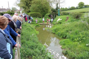 duck-race-1.jpg - Take a seat at North Witham Village Hall
