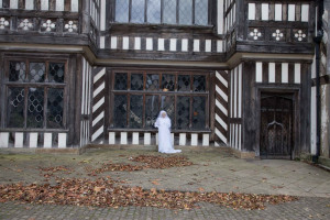 Ghostly apparition.jpg - A Case of History for Wythenshawe Hall