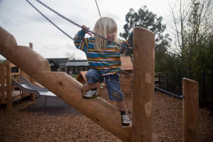 timberplay-steps.jpg - Revivify Manor Park! Our New Playground