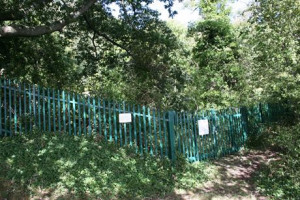 Re-Open Wood Lane Quarry