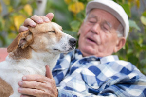 optimized-shutterstock-515265514.jpg - The CareDogs Croydon Loneliness Project
