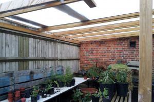 New greenhouse roof - smaller.JPG.jpg - Ropewalk Community Garden Summer Growing