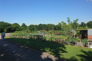 10.jpg - Moor Green Allotments Water Borehole