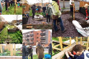 planting-trees.jpg - Tritton Vale Pocket Garden Goes Greener!