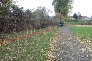 20161105-131036.jpg - Transforming Higham Hill Park, E17
