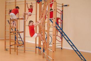 KPA: School Climbing Frame for PE