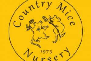 Cowfold Country Mice Nursery Technology