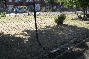 broken-fence-2-img-3516-low-res.jpg - TYS2 garden 4 everyone