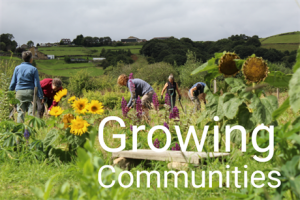 Growing Communities - Wildlife Pond