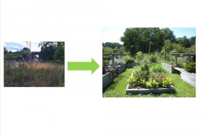 perivale-crowdfunder-image.jpg - Perivale Community Garden TYS2