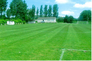 unnamed.jpg - Help us protect Morriston Town AFC!