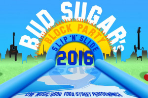 1.jpg - Bud Sugar Giant Slip and Slide