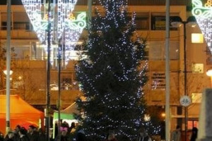 Tree.jpg - Light Up Harlow Town Centre