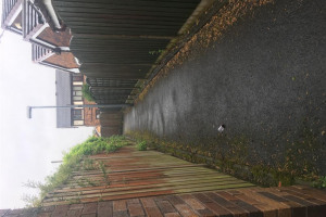 alley-1.jpg - Audenshaw alleyway tidy up and revamp!