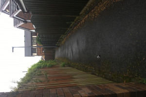 alley-5.jpg - Audenshaw alleyway tidy up and revamp!