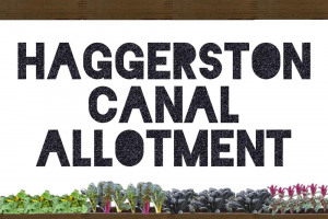 image.jpeg - Regent's Canal Allotment in Haggerston