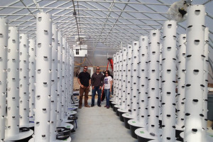 aeroponic.jpg - The uFarm --Urban Container Farm System