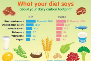 carbon-footprint-graph.jpg - Plant Eatery Farm to Market