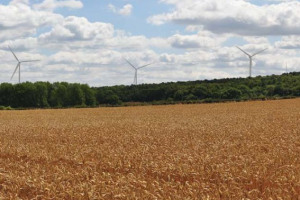 Roseland Fields2 .jpg - Roseland Community Windfarm