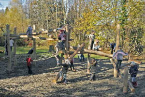 timberplay-image-2.png - Revivify Manor Park! Our New Playground