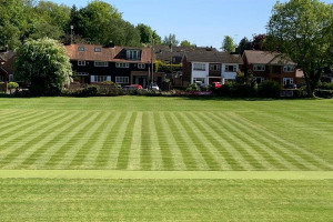 fcc-2020.jpg - Please support Farningham Cricket Club
