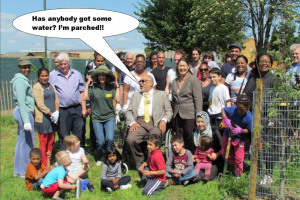 Water for Mitcham Community Orchard