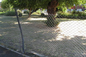 broken-fence-3-img-3515-low-res.jpg - TYS2 garden 4 everyone