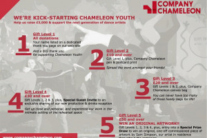 crowdfunding-campaign-gifts-copy.jpg - We're Kick-Starting Chameleon Youth