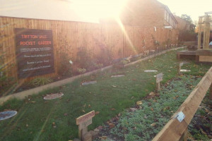 garden-after.jpg - Tritton Vale Pocket Garden Goes Greener!