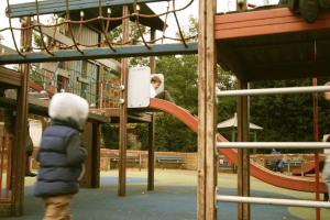Pic 5.jpg - Percy Rd Playground Regeneration