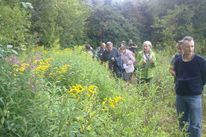 One of the field meetings, led by Naturalist Fiona Barclay, investigates Bumble Bees.jpg - Perivale wood Centre (Project 21)