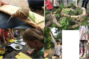 frends-spiral-2.png - Community Garden Outdoor Classroom